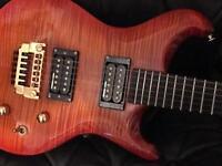 UK Custom built 👹 Electric Guitar