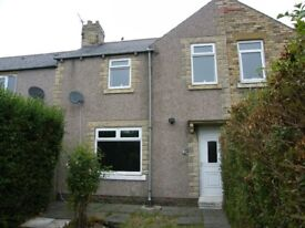 2 BEDROOMED HOUSE TO LET DALTON AVENUE LYNEMOUTH