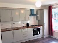 Beautiful Newly Refurbished 1 double bedroom flat at New Cross