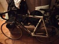 Bike Aluminium frame 6000 series Barracuda road and race bike