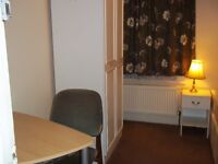 Large single room for friendly professional, £95pw