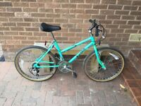 Ladies Bike - Raleigh Lizard all terrain cycle