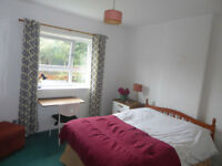 1 term exchange or internship? YOU'RE WELCOME! 1 double bedroom in shared house with garden