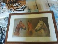 Arkle, red rum,desert orchid horse picture