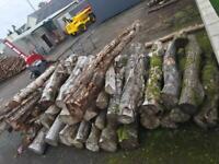 Logs firewood timber