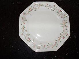 Eternal Beau 10 inch Dinner Plates