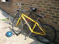 Two Bicycles BARGAIN!!!! £30 each or £50 for the two