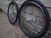 mountain/ road bike wheels 26 inch / rigida csb dp22 rims , schwalbe tyres / hg cassette disc brake