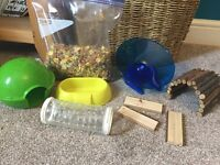 3 young dwarf hamsters, large cage & accessories