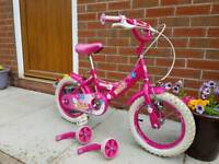 Girls 14 inch Bumper Bike