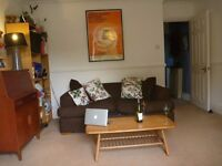 One bed Peckham/Camberwell/Denmark Hill, Roof Terrace and Shared Garden!