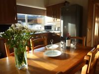 Cottage style bungalow (7th July Cancellation for this week 7n £380)