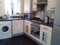 REDUCED RENT FOR BEAUTIFUL HUGE DOUBLE ROOM - WAS £110 NOW ONLY £95 PER WK - ALL BILLS & WIFI INC.