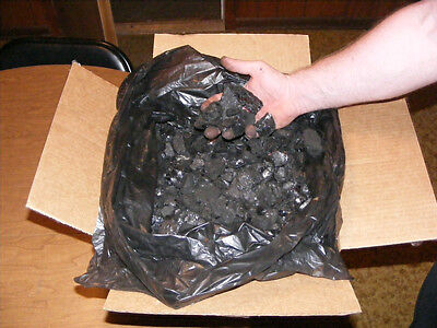 Bituminous Coal (25lbs.)