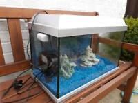 Gold fish fish tank + filter . Ornaments . Food ect