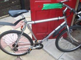 21 geared raleigh mountainbike spot on chrome colour