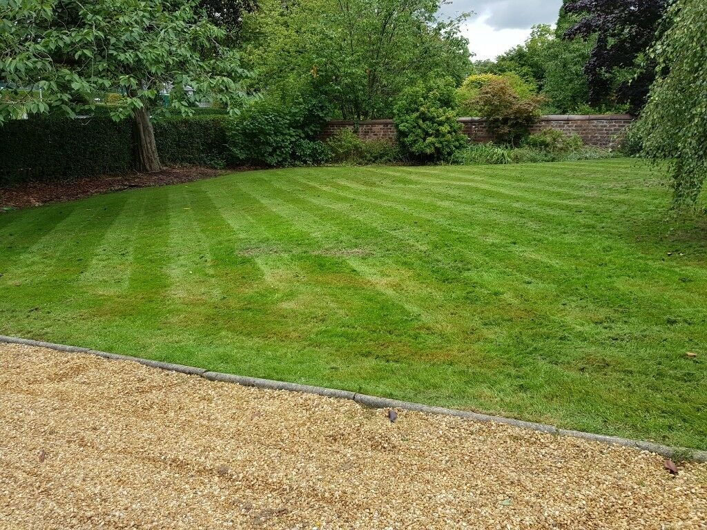 Grassroots: Landscaping, Fencing & Decking Specialists. Tree Service,  Maintenance. Free Quotes - Grassroots: Landscaping, Fencing & Decking Specialists. Tree Service