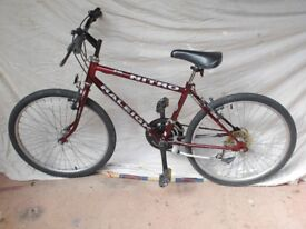 RALEIGH JUNIOR MOUNTAIN BIKE.