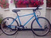 xxx Raleigh Reynolds 15 speed bike