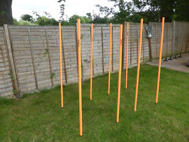 Set of 8 Diamond Football/Rugby Training poles