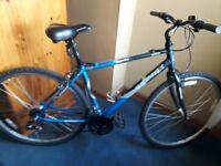 Cross trax Hybrid mountain city bike