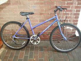 Raleigh Calypso womens hybrid bike