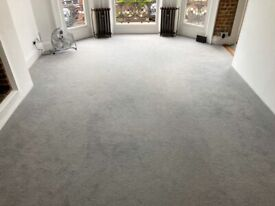 Large Light Grey Carpet with Underlay