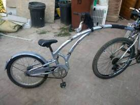 Adams Alloy 1, Trail Along Bike, with quick release