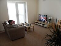 Modern Luxury Spacious 2 bed apartment 10 mins walk from Princes Street & Waverly. Parking & Gym