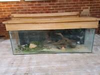 Large Fish Tank/Reptil Tank on Solid Oak Sideboard