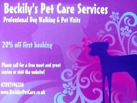 Dog Walking & Pet Care