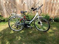 Raleigh Pioneer Metro LX Ladies town bike, custom handle bars and free lights