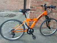 Crank boys mountain bike in great condition