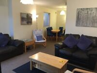 Large room in central friendly house with cleaner!