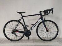 NEW, (4106) 700c 58 cm CERVELO R3 ULTEGRA Carbon ROAD BIKE BICYCLE RACER Size: L, Height: 175-190cm