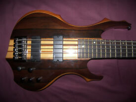 ESP LTD F-5E NS , Natural Satin 5-String Active Bass Guitar.