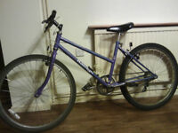 RALEIGH CALYPSO BICYCLE