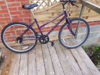 Ladies Raleigh Bicycle in good working condition