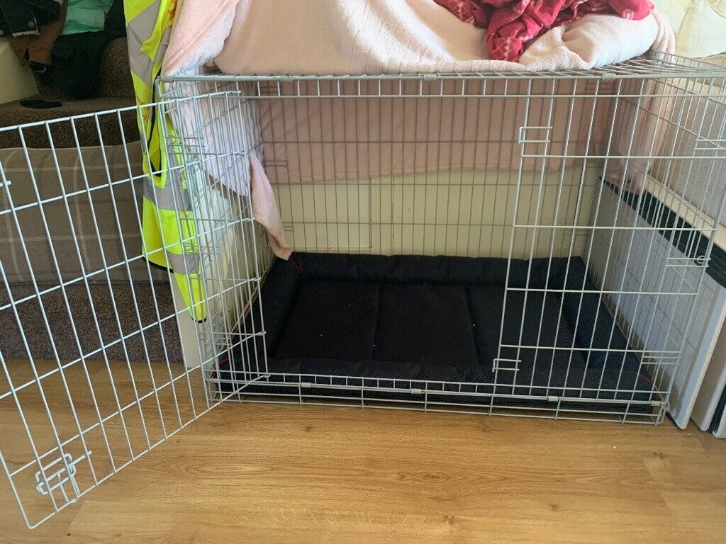 Xl Dog Crate And Mattress In Hull East Yorkshire Gumtree