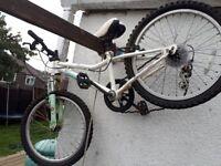 Childs bike neefs tlc