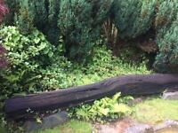 Bog Oak Garden Feature
