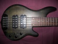 BASS Traben Chaos , 5-String Active Bass Guitar.