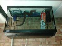Large (126 litres) Fluval fish tank with cabinet