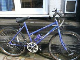 really nice ladies/girls raleigh calypso bike