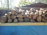 WANTED, FREE LOGS, FALLEN TREES, CORD WOOD