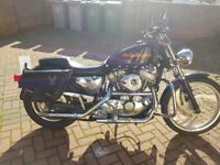 Harley Davidson sportster 883 cc 1999 lot of extras must to be seen!!