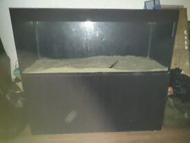 5ft fish tank