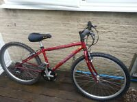 Specialized Hardrock GSX Mountain bike.