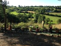 Barn conversion cottage in rural Normandy sleeps 4