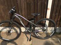 Specialized myka ladies mountain bike